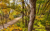Katy Trail near Rocheport, MO - C2-0083 - 72 ppi-3