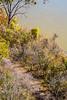 Runner (look hard) on Katy Trail near Weldon Springs trailhead in Missouri - C2-0035 - 72 ppi
