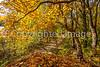 Katy Trail near Rocheport, MO - C1-0467 - 72 ppi