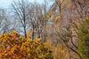 Katy Trail near Weldon Springs trailhead in Missouri - C3-0003 - 72 ppi