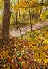 Katy Trail near Rocheport, MO - C2-0086 - 72 ppi-2