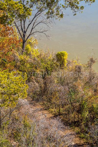 Runner (look hard) on Katy Trail near Weldon Springs trailhead in Missouri - C2-0036 - 72 ppi