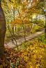 Katy Trail near Rocheport, MO - C2-0079 - 72 ppi