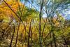 Katy Trail near Rocheport, MO - C1-0012 - 72 ppi