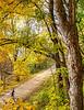 Katy Trail near Rocheport, MO - C2-0098 - 72 ppi-2