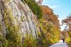 Katy Trail near Rocheport, MO - C3-0105 - 72 ppi