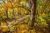 Katy Trail near Rocheport, MO - C2-0175 - 72 ppi