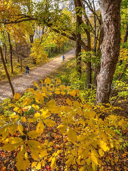 Katy Trail near Rocheport, MO - C2-0073 - 72 ppi-3