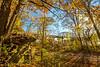 Katy Trail near Rocheport, Missouri - 11-9-13 - C2-0173 - 72 ppi