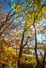 Katy Trail near Rocheport, Missouri - 11-9-13 - C1-0132 - 72 ppi