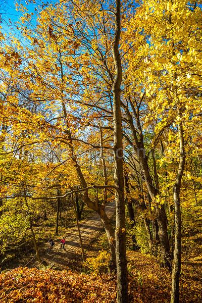 Katy Trail near Rocheport, Missouri - 11-9-13 - C2-0109 - 72 ppi
