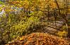 Katy Trail near Rocheport, Missouri - 11-9-13 - C2-0111 - 72 ppi-2