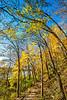 Katy Trail near Rocheport, Missouri - 11-9-13 - C1-0091 - 72 ppi