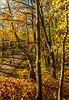 Katy Trail near Rocheport, Missouri - 11-9-13 - C2-0095 - 72 ppi-2