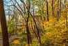 Katy Trail near Rocheport, Missouri - 11-9-13 - C2-0148 - 72 ppi