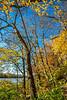 Katy Trail near Rocheport, Missouri - 11-9-13 - C1-0081 - 72 ppi