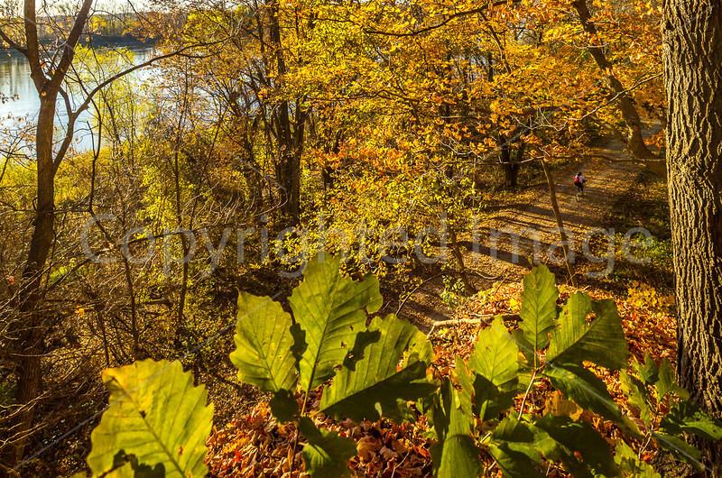 Katy Trail near Rocheport, Missouri - 11-9-13 - C2-0080 - 72 ppi-2