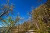 Katy Trail near Rocheport, Missouri - 11-9-13 - C1-0007 - 72 ppi