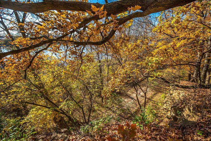 Katy Trail near Rocheport, Missouri - 11-9-13 - C1-0447 - 72 ppi