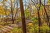 Katy Trail near Rocheport, Missouri - 11-9-13 - C2-0160 - 72 ppi