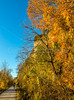 Katy Trail near Rocheport, Missouri - 11-9-13 - C2-0248 - 72 ppi-2