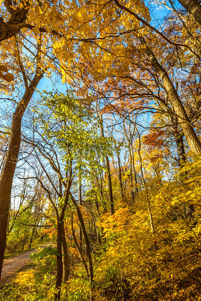 Katy Trail near Rocheport, Missouri - 11-9-13 - C2-0168 - 72 ppi