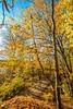 Katy Trail near Rocheport, Missouri - 11-9-13 - C2-0119 - 72 ppi