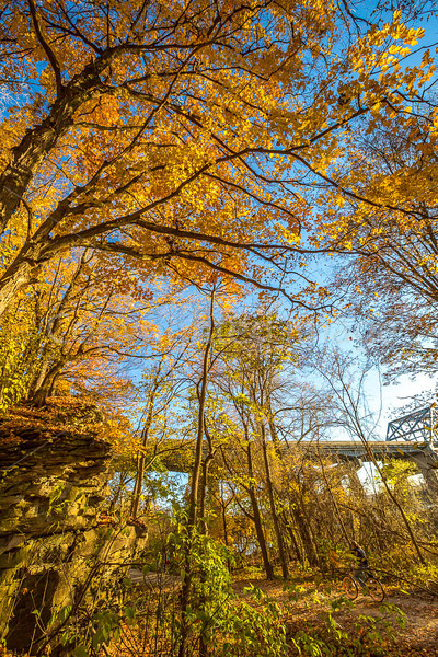 Katy Trail near Rocheport, Missouri - 11-9-13 - C2-0199 - 72 ppi