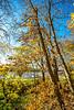 Katy Trail near Rocheport, Missouri - 11-9-13 - C1-0069 - 72 ppi