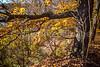 Katy Trail near Rocheport, Missouri - 11-9-13 - C1-0393 - 72 ppi