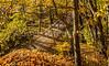 Katy Trail near Rocheport, Missouri - 11-9-13 - C2-0117 - 72 ppi-2