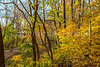 Katy Trail near Rocheport, Missouri - 11-9-13 - C2-0159 - 72 ppi