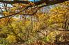 Katy Trail near Rocheport, Missouri - 11-9-13 - C1-0441 - 72 ppi