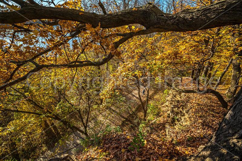 Katy Trail near Rocheport, Missouri - 11-9-13 - C2-0046 - 72 ppi