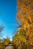 Katy Trail near Rocheport, Missouri - 11-9-13 - C2-0248 - 72 ppi