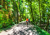 Cyclist(s) on Katy Trail, Rocheport to MKT turnoff for Columbia - C2-A-0283 - 72 ppi