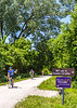 Cyclist(s) on Katy Trail, Rocheport to MKT turnoff for Columbia - C3-0224 - 72 ppi