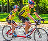 BikeMO 2016 - C1-30056 - 72 ppi-2