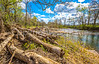 Meramec River near Cook Station, northeast of Salem, MO - C2-0226 - 72 ppi