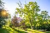 Missouri Baptist Wellness Trail-0019 - 72ppi