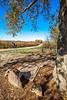 Near Haun's Mill Massacre site 65 miles northeast of Kansas City, MO - C2 -0105 - 72 ppi