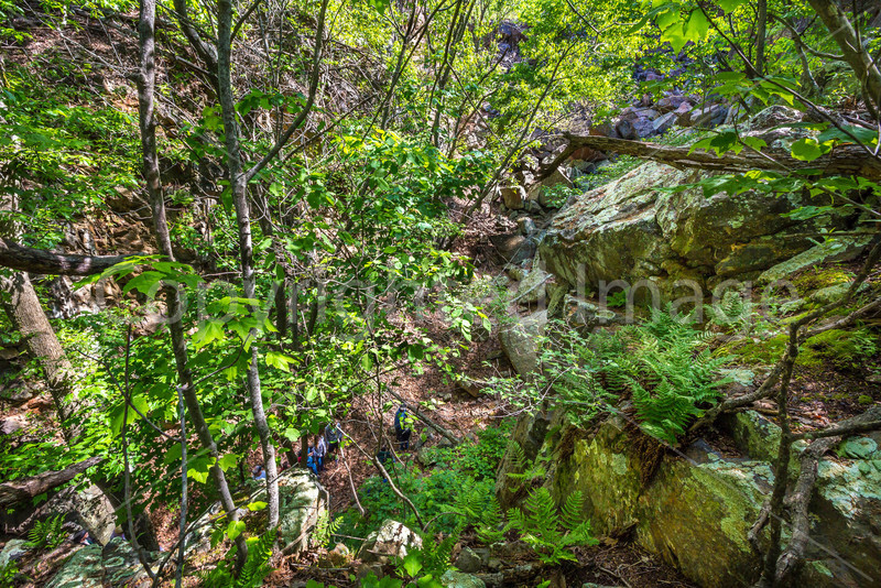 Pilot Knob Mountain hike, Missouri - C1-0015 - 72 ppi