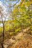 Katy Trail along Missouri River near Rocheport, MO - C2-0397 - 72 ppi