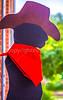 Missouri - Sikeston Rodeo Parade & Cowboy Arts Festival - C1-0185 - 72 ppi