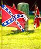 Civil War - Confederate flags over graves, Missouri   - 72 ppi - 3