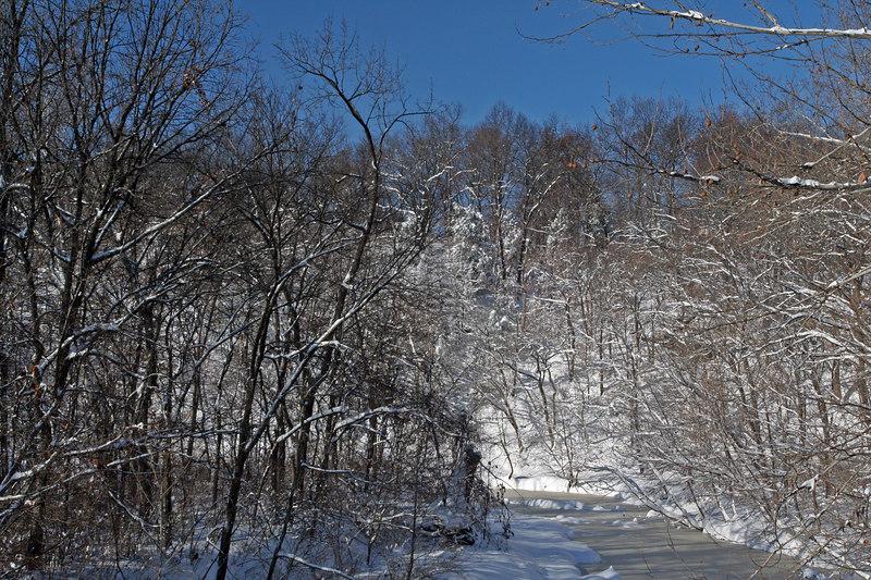 View of Grindstone Creek
