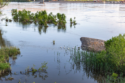 Missouri river flood of 2019 at Omaha Nebraska, Swollen Missouri River overflowing its banks and flooding the Omaha riverfront and Tom Hanafan plaza,  in Council Bluffs Iowa.