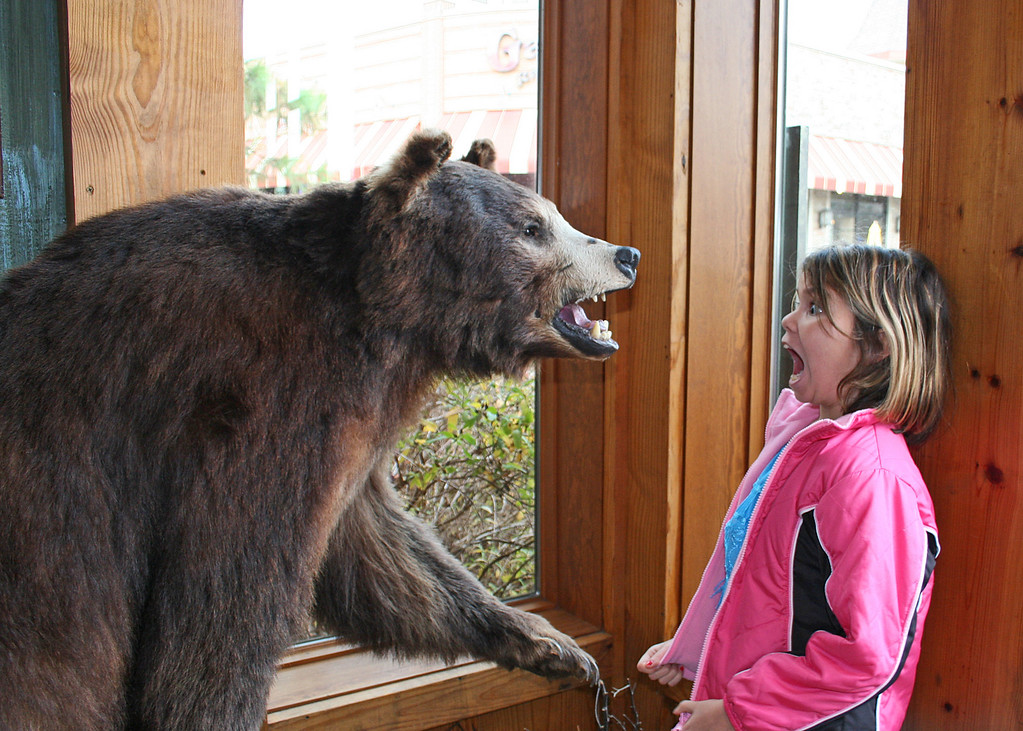 Don't let that bear scare you, Astali