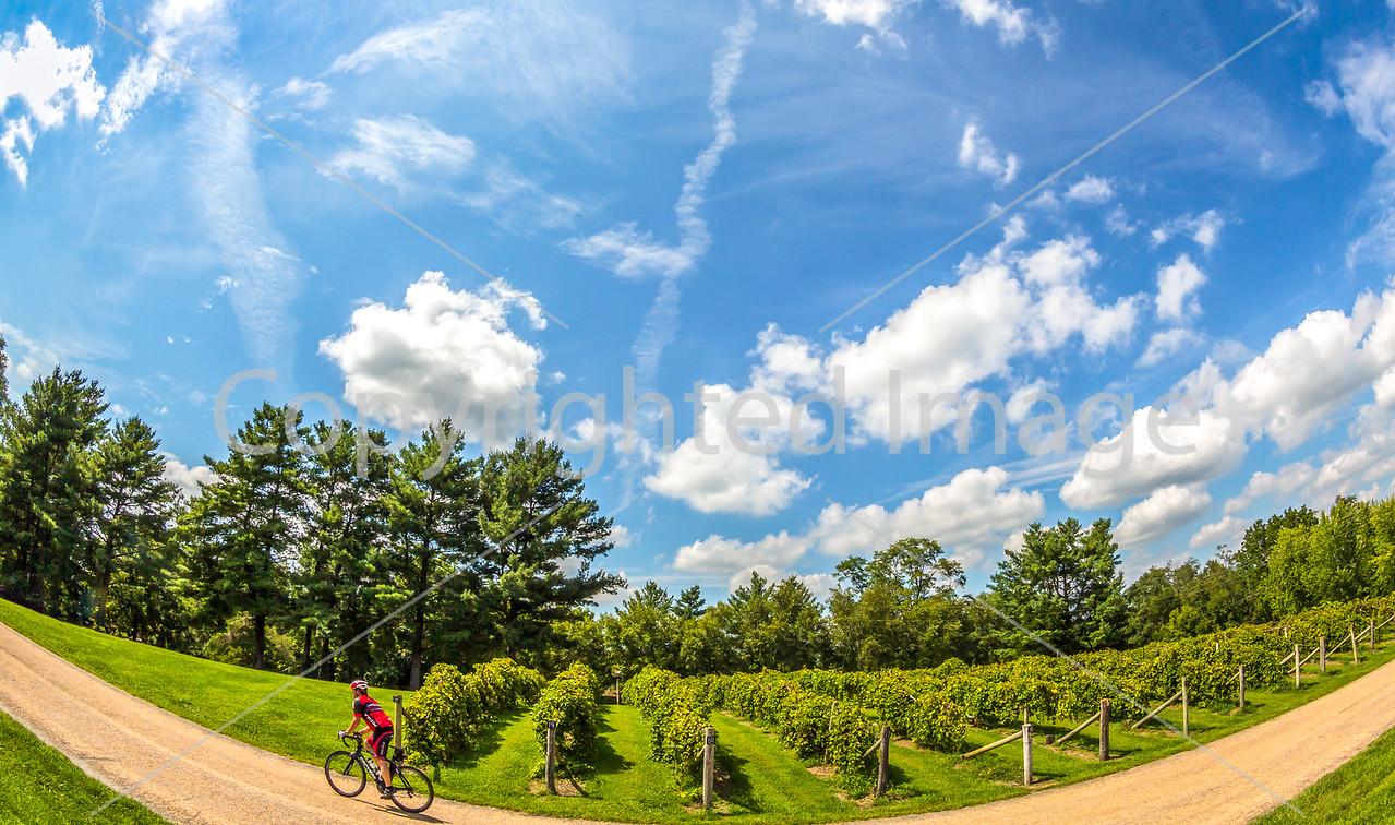 BikeMO 2016 - C2-0999 - 72 ppi