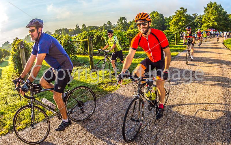 BikeMO 2016 - C2-0120 - 72 ppi